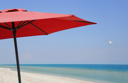 Beach umbrella on a sunny day, sea in background. Beach umbrella close-up. Soaring seagull. Idyllic tropical beach with red umbrella, white sand, turquoise ocean water and blue sky.