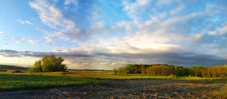 Picturesque panoramic scenery of the green agricultural field. Idyllic rural scene. Atmospheric spring landscape. Spring panoramic landscape with clouds. Rural landscape before sunset.