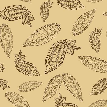 Cacao mano dibujada patrón sin fisuras en el fondo beige. Cacao ilustración botánica del vector. Doodle de los alimentos cacao nutriente saludable. Cacao grabado línea de esbozo de grabado. cacao alimento bebida postre ingrediente