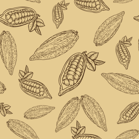 Cocoa hand drawn seamless pattern on beige background. Cocoa botany vector illustration. Doodle of healthy cocoa nutrient food. Cocoa engraving sketch etch line.  Food cocoa dessert drink ingredient Ilustração