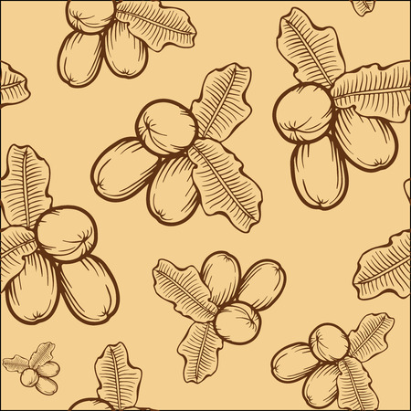 treatment plant: Shea nuts plant, berry, fruit natural organic butter ingredient. Hand drawn vector sketch engraved illustration. Brown Shea nuts pattern on beige background. Treatment, care, food ingredient