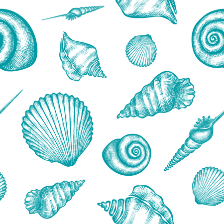 Vector seamless pattern with hand drawn seashells.  Marine background in engraved style. Hand drawn underwater vector illustration with seashells.