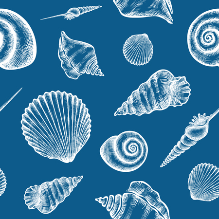 hand print: Vector seamless pattern with hand drawn seashells.  Marine background in engraved style. Hand drawn underwater vector illustration with seashells.