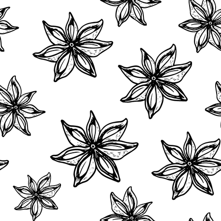 Vintage hand drawn Star Anise seamless pattern on white.  Dried Star Aniseed or lllicium Verum, Used for Seasoning in Cooking. Star anise dessert  spice fruit and seeds.  Vector illustration