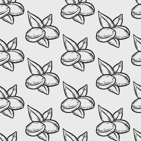 Seamless pattern of argan vector drawing label nut oil, fruit, berry, leaf, branch, plant, Hand drawn sketch illustration.