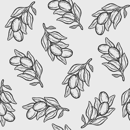 Seamless pattern of argan vector drawing nut oil, fruit, berry, plant. Hand drawn engraved vector sketch etch illustration.