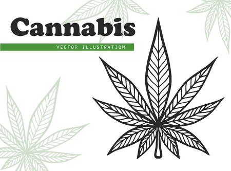 Marijuana leaf vector. Cannabis engraving plant.