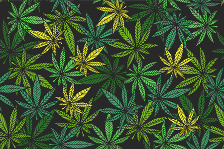 Marijuana leaf vector seamless pattern.  Cannabis engraving plant.