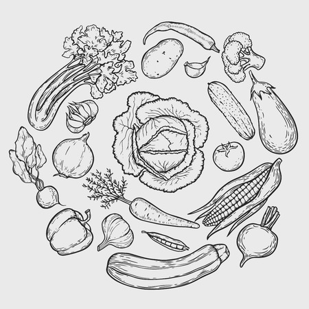 Vegetarian circle background with hand drawn organic vegetables.Vector vintage illustration. Can be used for wrapping paper, street festival, farmers market, country fair, shop, menu, cafe, restaurant