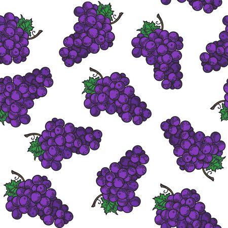 Vector  grape  engraving seamless pattern on white background. Vintage hand drawn illustration for menu, ads Ilustração