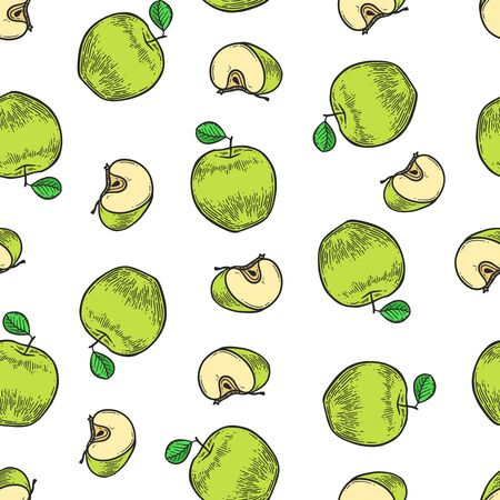 Vector  green  apple  engraving seamless pattern on white background. Vintage hand drawn illustration for menu, ads