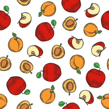 Vector  apple and apricot  engraving seamless pattern on white background. Vintage hand drawn illustration for menu, ads