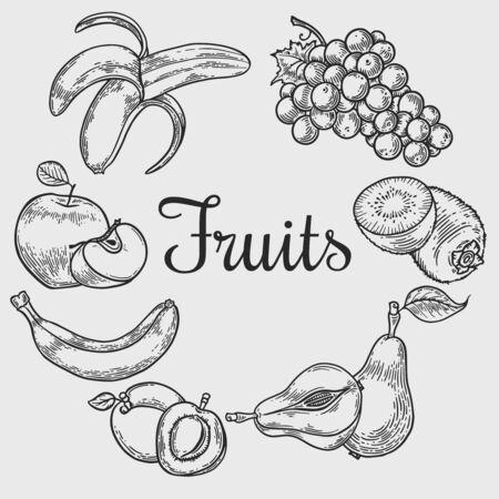 Vector  engraving fruit wreath on white background. Vintage hand drawn illustration for menu, ads Banco de Imagens - 143824315