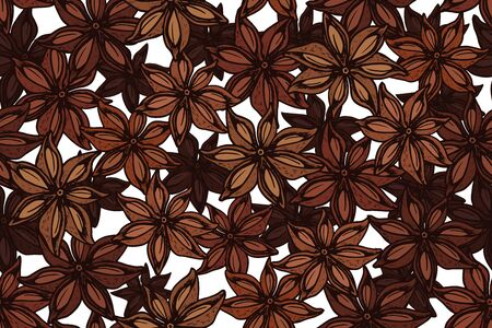 Vector star anise engraving seamless pattern on white background. Vintage hand drawn illustration for menu, ads. Exotic spice.