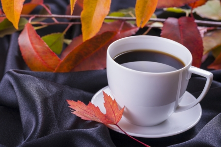 Close up photo of an Autumn  hot coffee cup on the black satin background.