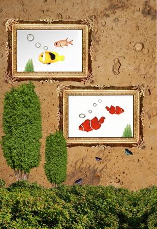 Fish Idea 04 Stock Photo - 11890014