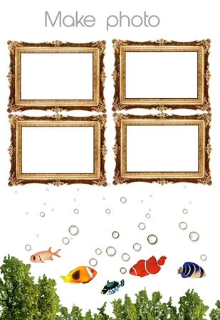 Take a Photo Fish Sample text 02 Stock Photo - 11890015