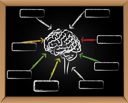 education concept: Brain and arrows on blackboard background,Vector