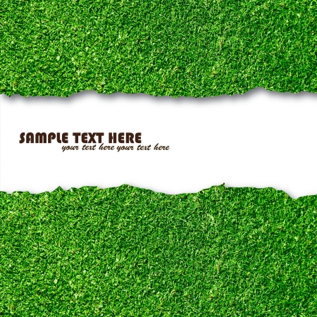 Blank white paper on green grass for text  Stock Photo