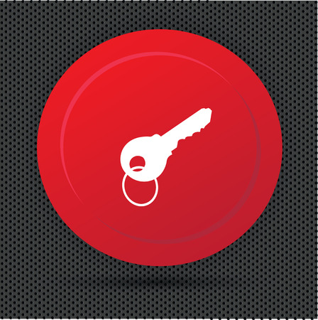privileges: Key button,vector Illustration