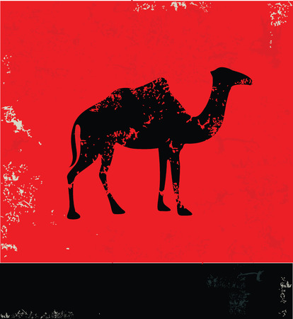 hunch: Camel symbol,vector Illustration