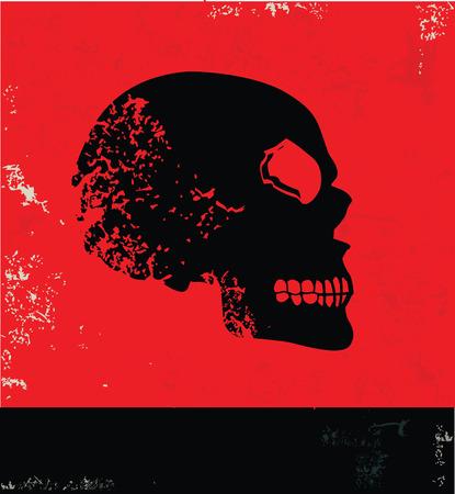 sapiens: Skull symbol,vector Illustration