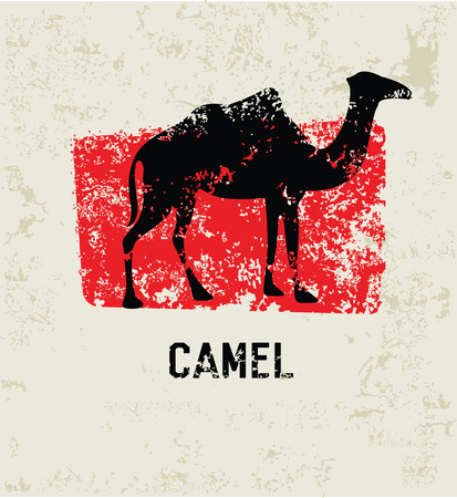 Camel grunge symbol,clean  Vector