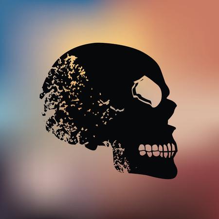 sapiens: Skull design on blur background Illustration