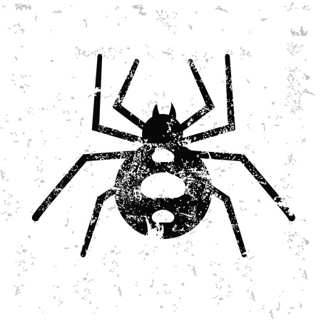 arthropod: Spider design on old paper