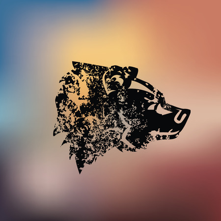 kodiak: Bear design on blur background,grunge vector Illustration