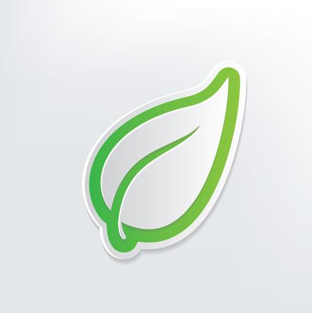 Leaf design on white background,clean vector