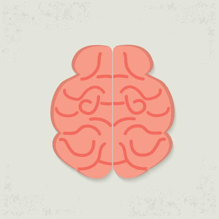gyrus: Brain design on old background,clean vector Illustration