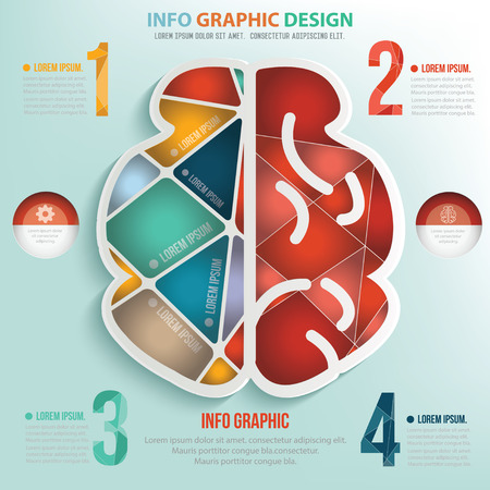 brain puzzle: Brain puzzle info graphic design,clean vector