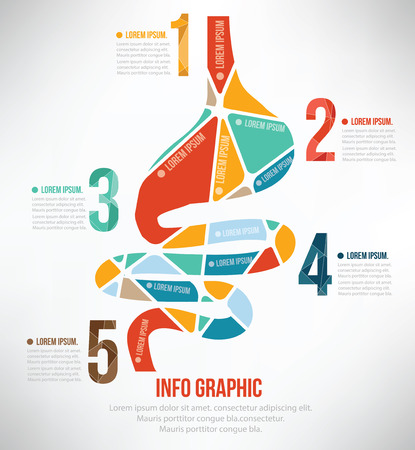 stomach illustration: Stomach puzzle info graphic design
