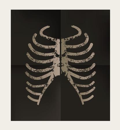 Rib design on black background,vector
