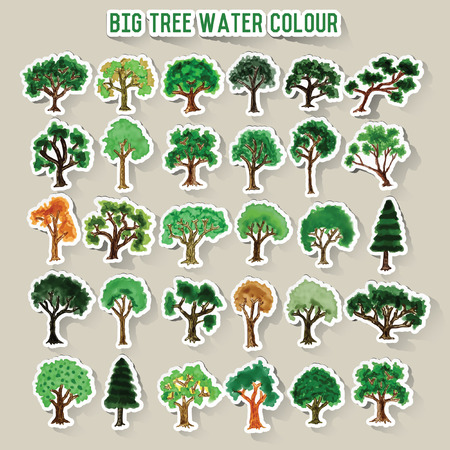 pine trees: Tree water colors concept design,vector Illustration