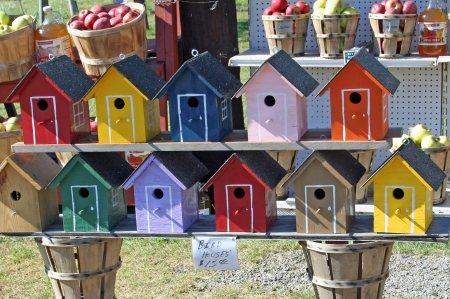 Painted wood birdhouses