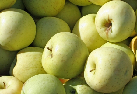 Virginia Gold apples closeup