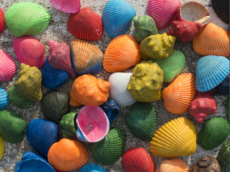 memorable: memorable seashells close-up on a wooden table with sand