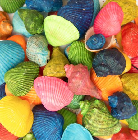 memorable: Bright summer background of colorful shells