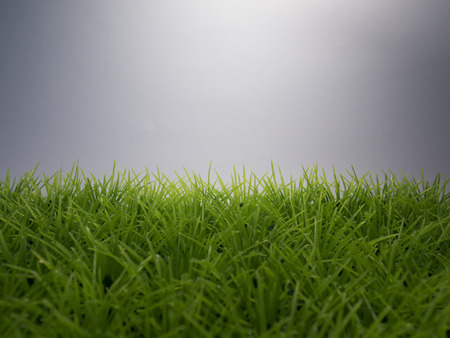 lawn: Green lawn on a white background, easy to work with