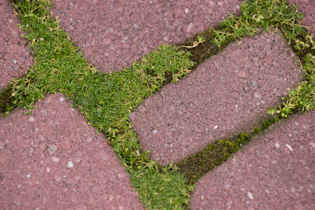 grey pattern: background stone block walk path in the park with green grass Stock Photo