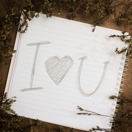 single word: Word of love in book and dry flower on old desk Stock Photo