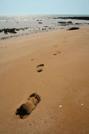 persian gulf: Footsteps on sand. Coast of Persian Gulf, Queshm island, Iran