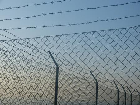 detain: wire mesh 2
