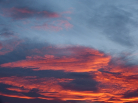 devil ray: this is red sky in our village