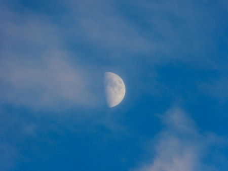 this is moon on the blue evening sky photo