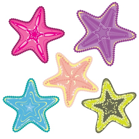 seafish: Set of colorful star-fishes Illustration