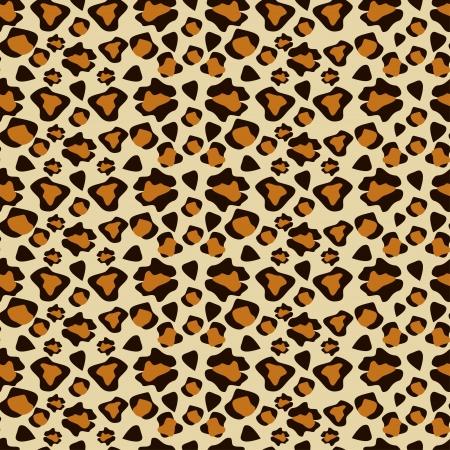 cheetah: Cheetah patr�n piel perfecta