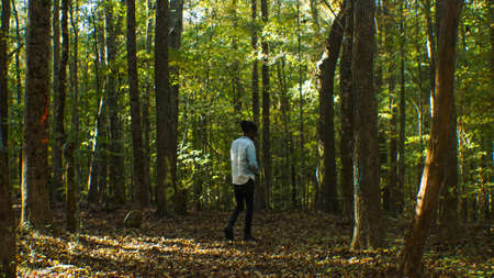 A Tall Scary Black Slender Man Standing in the Forest
